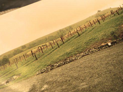 17. fertile soil_ gravfält